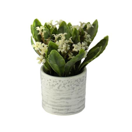 Maceta decorativa con flores blancas